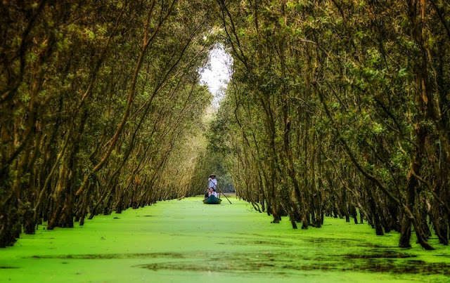 7 Days To Explore The Mekong Delta, What Should You Do? 2