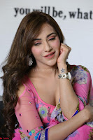 Actress Angela Krislinzki in Pink Saree Blouse Exclusive Pics March 2017 ~  018.JPG