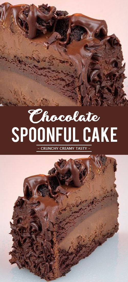 Easy Chocolate Spoonful Cake