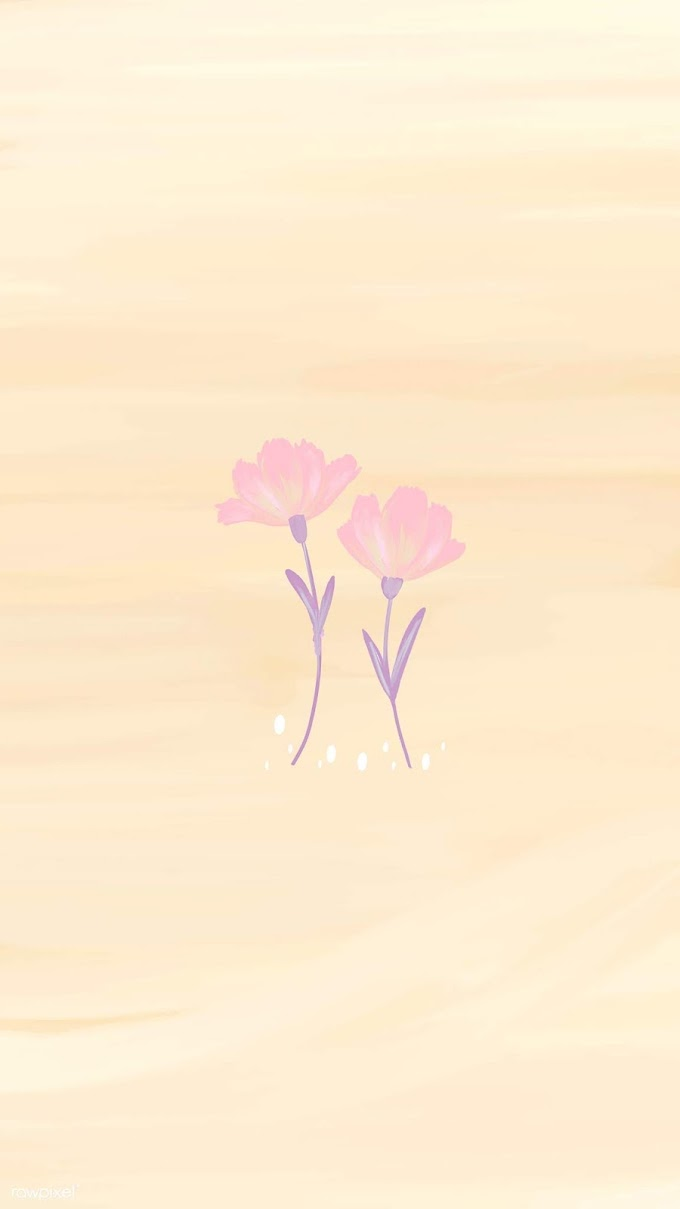 Flores Rosas Papel De Parede Celular