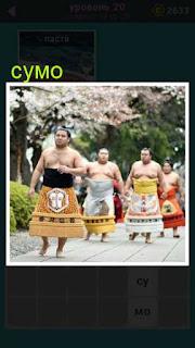 на площадке по кругу идут мужчины которые занимаются сумо 20 уровень 667 слов