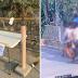 Watch   Isang Grupo ng mga Babae, Sinimot ang Laman ng Isang Community Pantry!