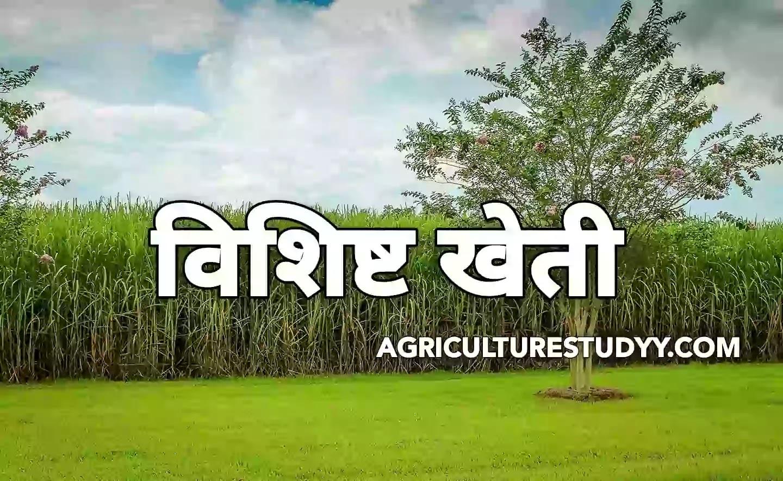विशिष्ट खेती किसे कहते है इसके लाभ एवं दोष बताएं ( What is the specialized farming explain its benefits and disadvantage )