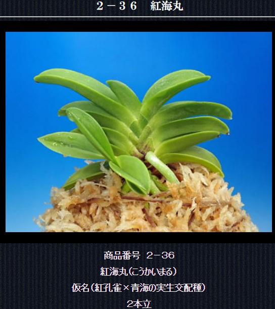 http://www.fuuran.jp/2-36.html