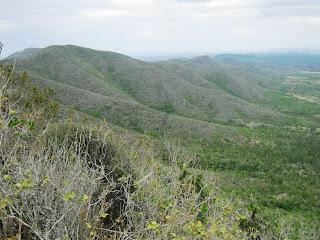 Cerro Galano, Cordillera del Cerro Galano
