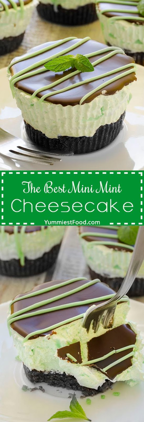 The Best Mini Mint Cheesecake