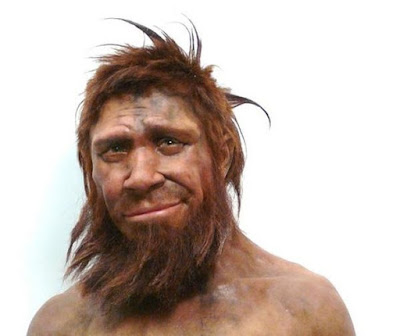 adult male Neanderthal facial reconstruction