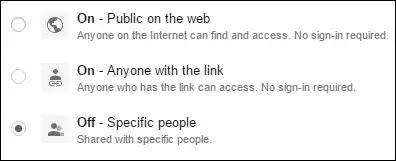 Google Drive File