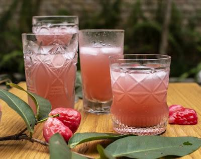 Suco de Jambo com Limão e Hortelã (vegana)