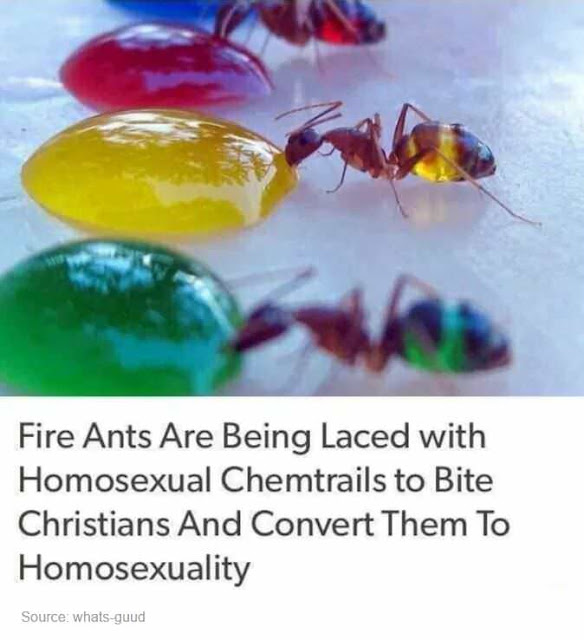 Fire ants are being laced with homosexual chemtrails to bite christians and convert them to homosexuality