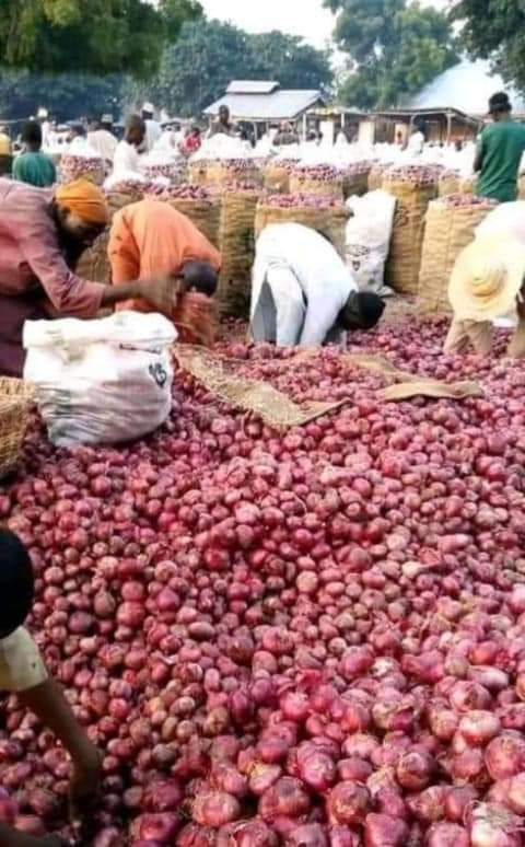 Onions will not be taken to the south again until we have peace in our business places -- ~Group of Farmers and onion marketers (Opman) alleged
