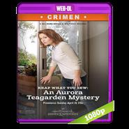 Un misterio para Aurora Teagarden: Un diseño mortal (2017) WEB-DL 1080p Audio Latino