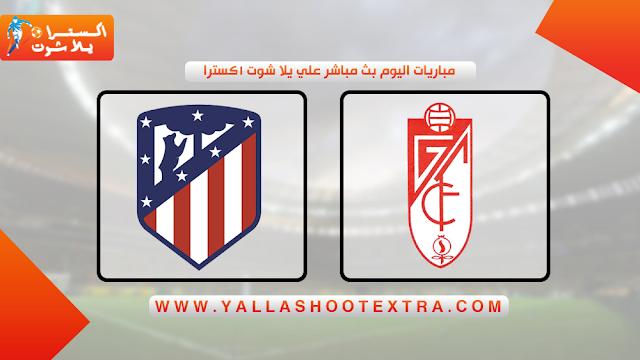 مباراة اتليتكو مدريد و غرناطة 23-11-2019 في الدوري الاسباني
