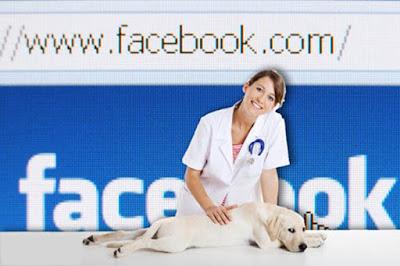 utilizar las redes Sociales para tu Veterinaria