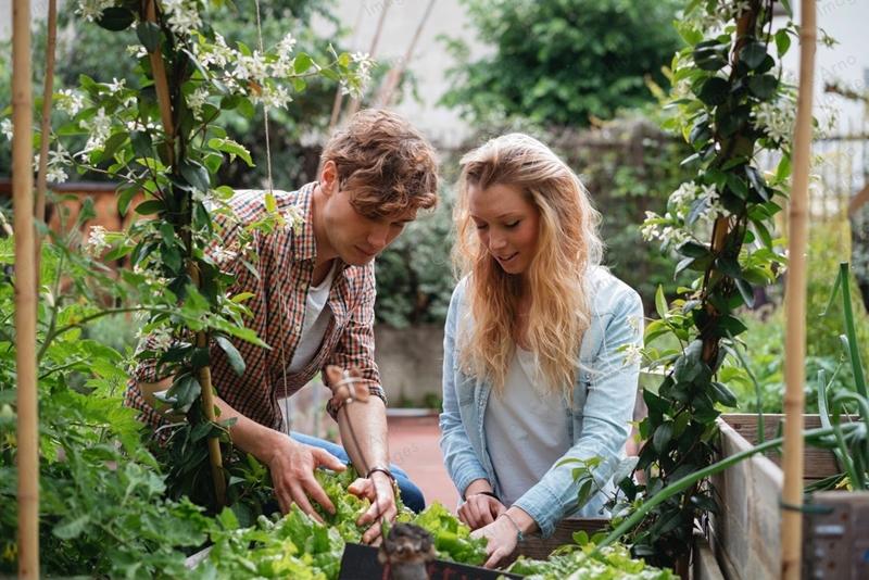 Stresten arınmak için toprak ve bahçeyle uğraşın
