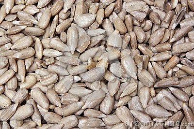 Potenzialità e semi di girasole di zucca