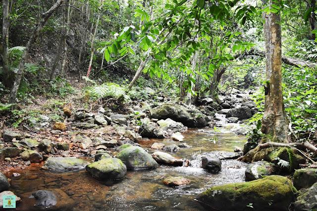Botanic Garden en Phong Nha-Ke Bang