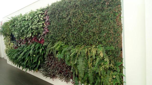 curso mantenimiento de jardines verticales