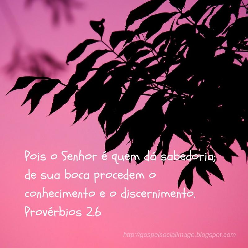 Imagens lindas evangélicas dias da semana - Provérbios 2.6