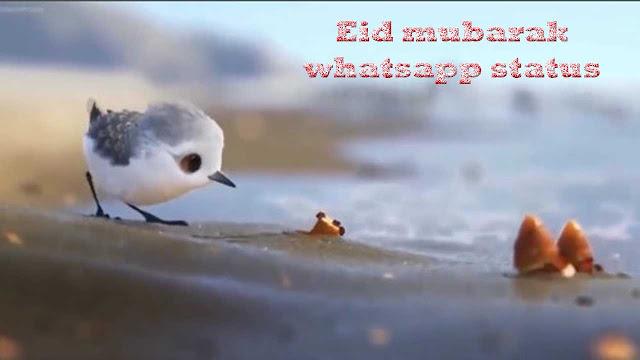 Eid mubarak whatsapp status 2019 | Best Eid mubarak status