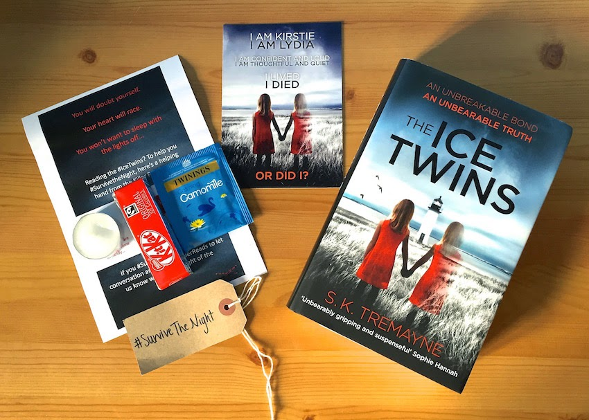 Morgan's Milieu | The Ice Twins: A Book Review - A page turner and a very chilling tale.