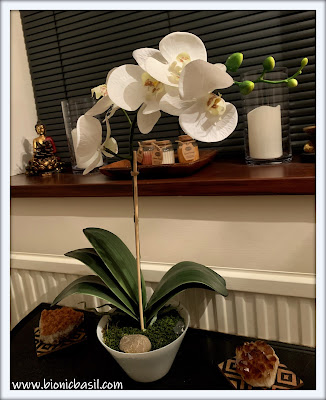 Peony Flowers Faux Lily at BBHQ ©BionicBasil® Cat Hazards Part II