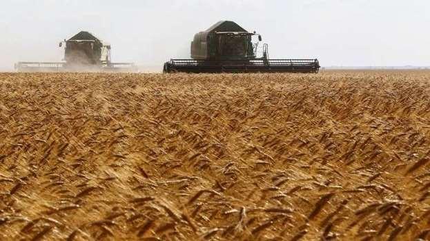 اتفاق على جعل سورية مركزاً لـ تصريف القمح الروسي