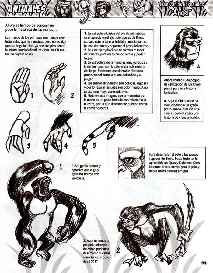 Descarga: DibujArte #43 - Especial de Animales 2