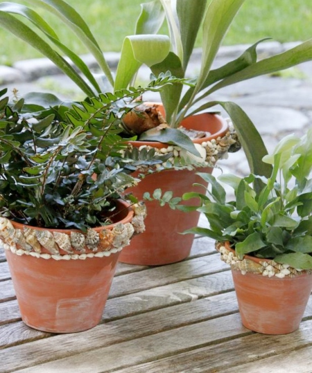 How to Decorate Terracotta Pots with Shells