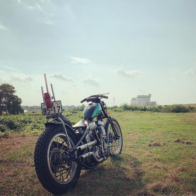 Harley Davidson Panhead By Skunk Choppers Hell Kustom