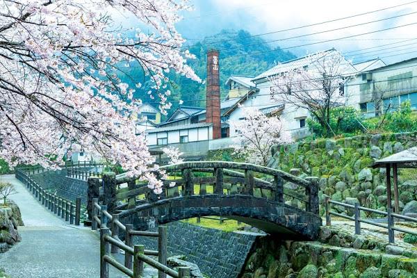 Hal Menarik Yang Bisa Kamu Temui Di Fukuoka