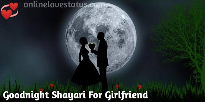 Good Night Love Shayari For Girlfriend  in Hindi With Images