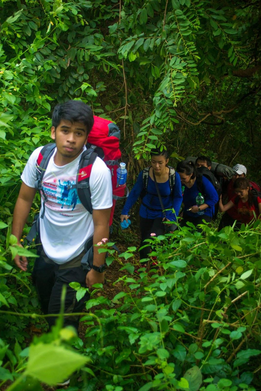 Mt. Tibig