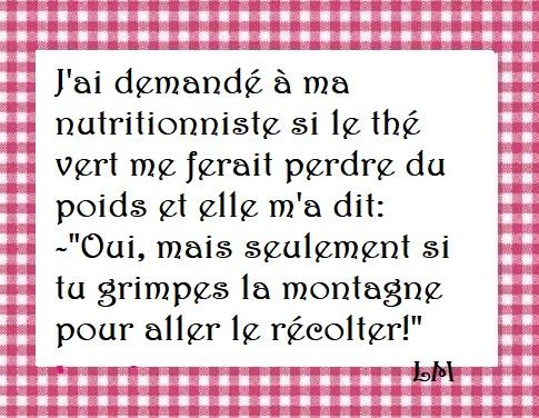 Jolies Citations Régime Humour