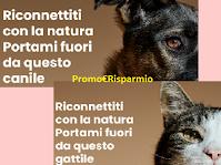 """Almo Nature regala un mese di alimentazione per cani o gatti adottati e ai loro rifugi con """"Companion Animal For Life"""""""