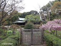 Gated area with building in background and blooming trees - Tokyo Imperial Gardens, Japan