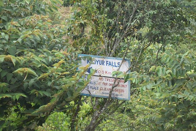 Hiking route to reach Killiyur Falls