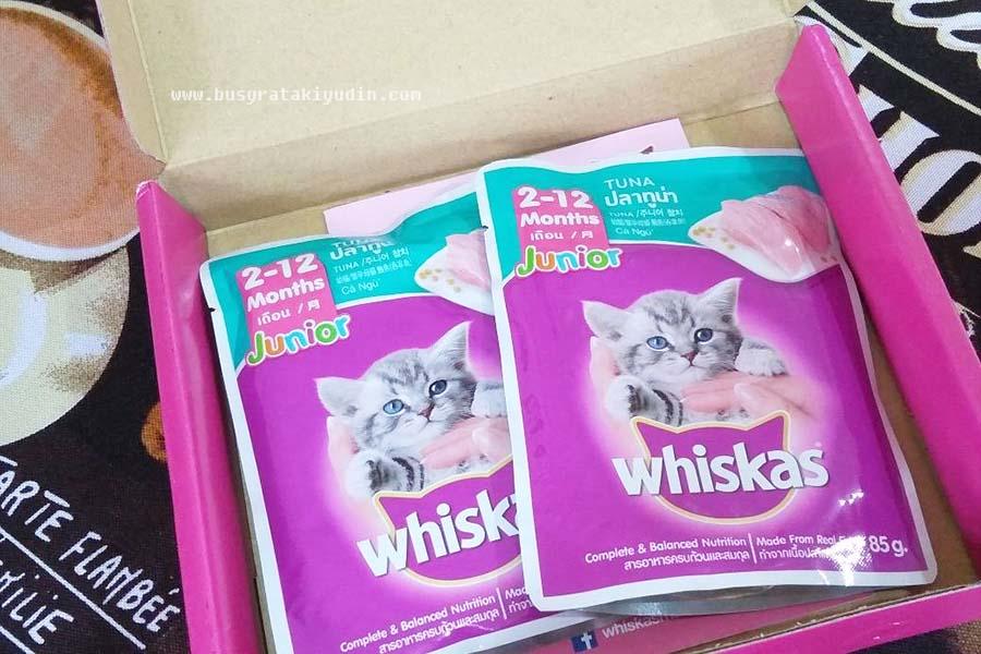 free sample, makanan kucing, percuma whiskas, makanan kucing percuma dari whiskas, makanan basah, baby kucing,