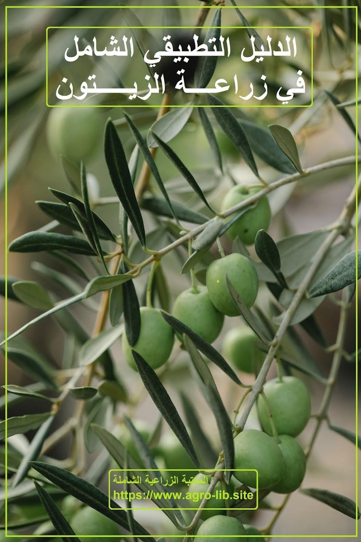 كتاب : الدليل التطبيقي الشامل في زراعة الزيتون