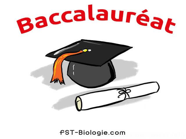 جميع دروس باكالوريا علوم الحياة والأرض ملخصة في ملف واحد pdf - Bac SVT Cours