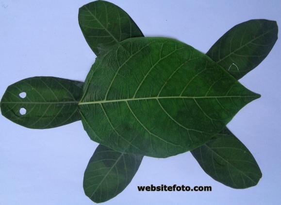Mozaik kura-kura dari daun