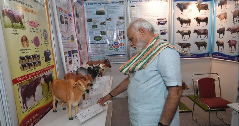 India PM Modi to launch National Animal Disease Control Programme Kheudt Help