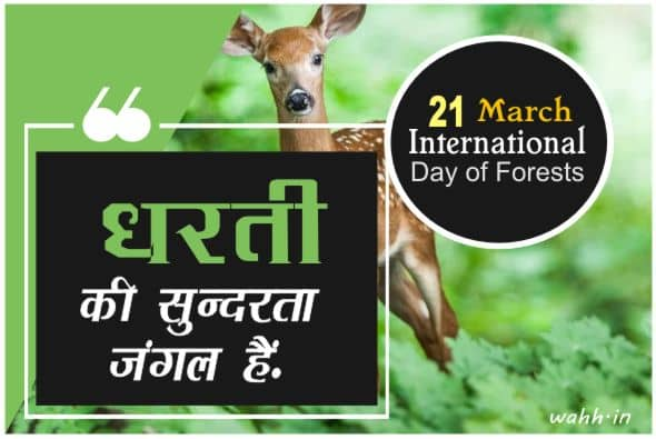 International Day of Forests The Fresh Quotes