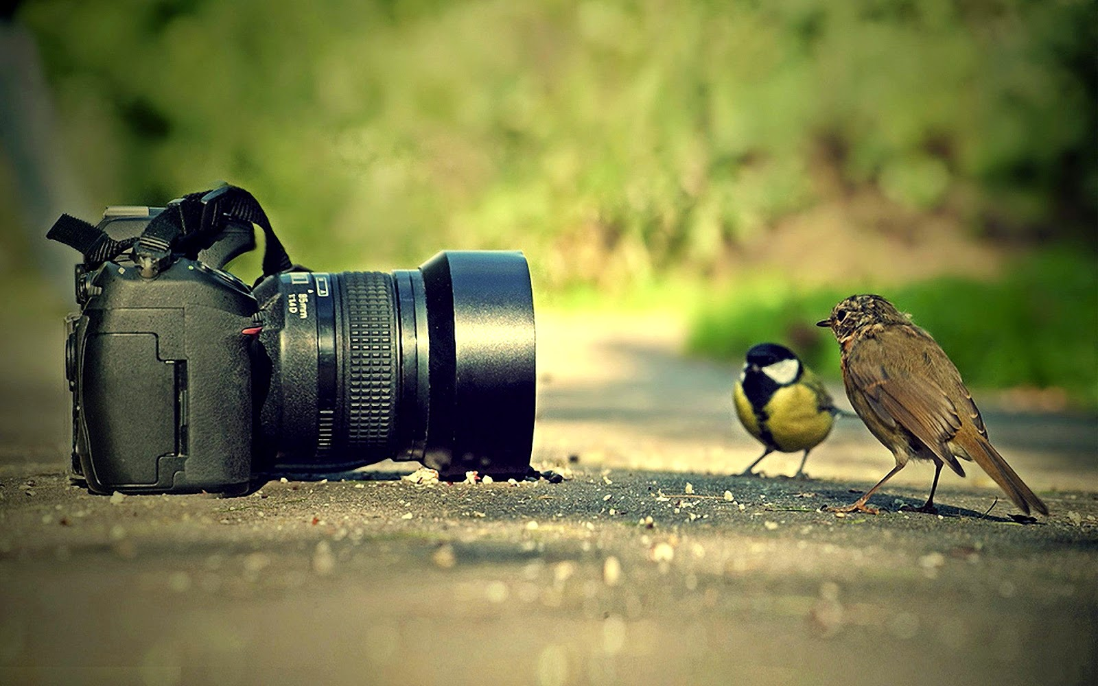 Creative Photography HD Wallpapers