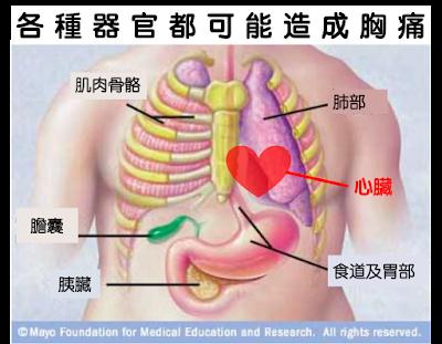 各個器官都可能引發胸部位置疼痛