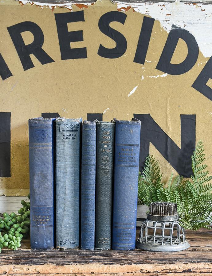 Styled vintage blue books