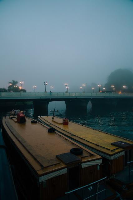 Puente Sacriste, Tigre