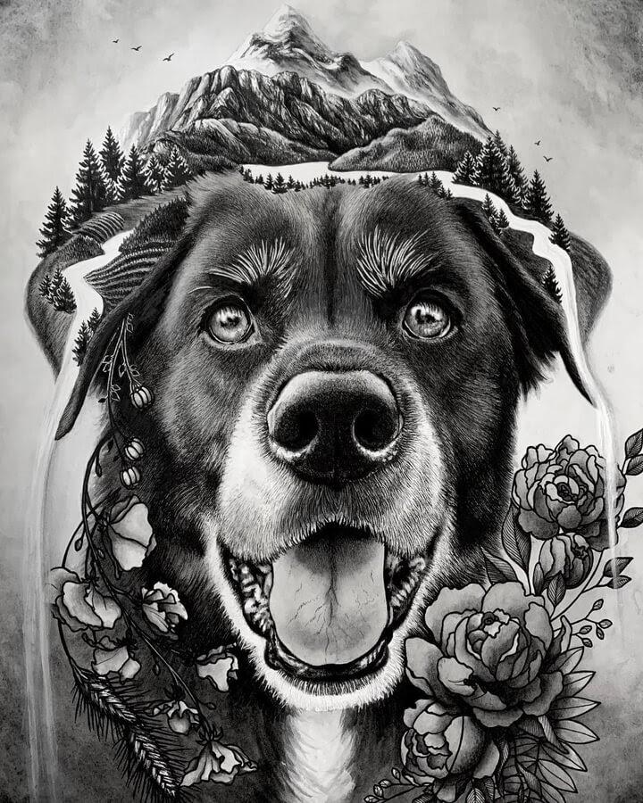 07-Dog-immersed-in-nature-Alyse-Dietel-www-designstack-co