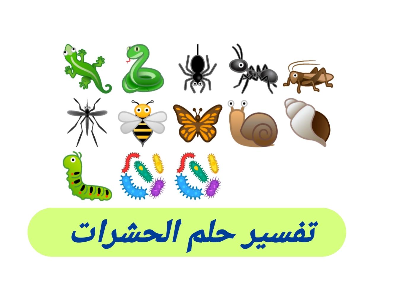 تفسير فرافيت احلام تفسير حلم الحشرات والقوارض والزواحف في المنام