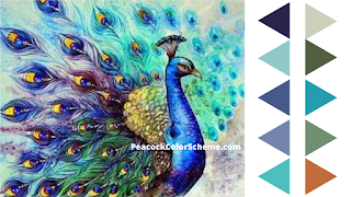 peacock colors, peacock color palettes